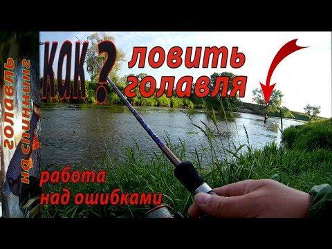 ВИДЕО: Ошибки при ловле голавля спиннингом на перекате малой реки. Рыбалка на спиннинг.