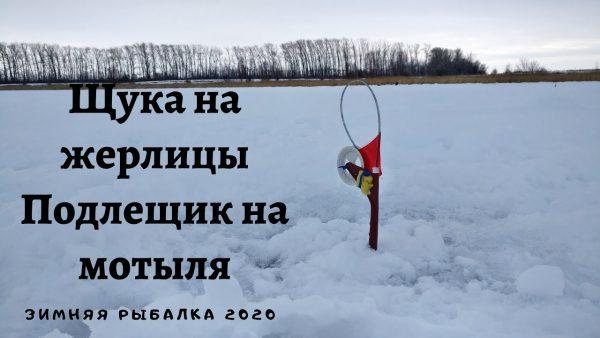 ВИДЕО: Щука на жерлицы, Подлещик на мотыля, Зимняя рыбалка 2020