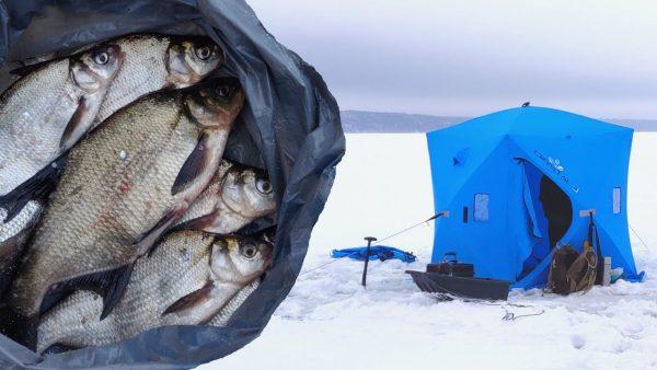 ВИДЕО: Зимняя палатка. Секретная прикормка на леща. Гриль на льду