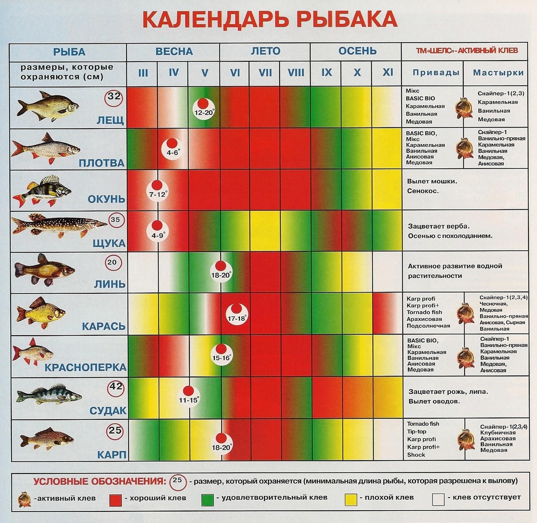 Календарь рыбака - весна, лето, осень