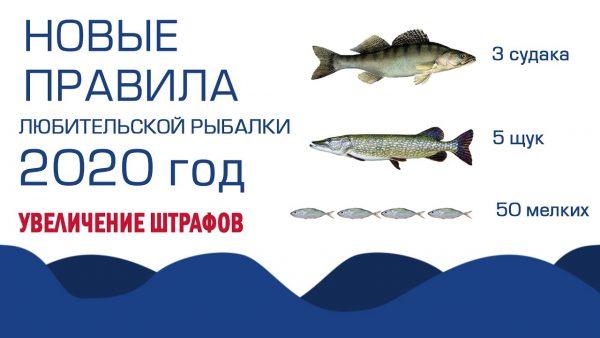ВИДЕО: Новые правила по закону о рыбалке в 2020 году, ужесточение штрафов в России