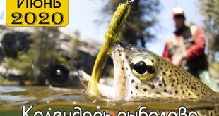 Календарь рыболова на июнь 2020 года