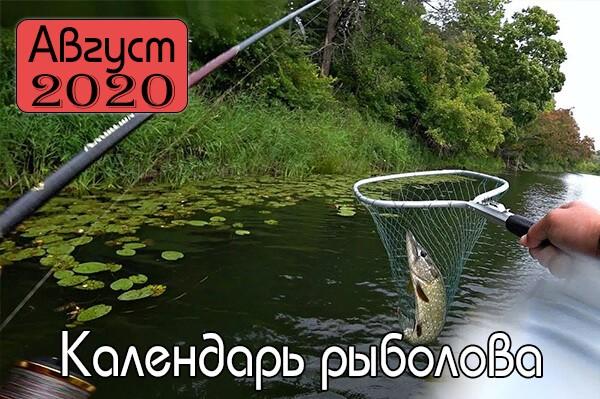 АВГУСТ Календарь рыболова