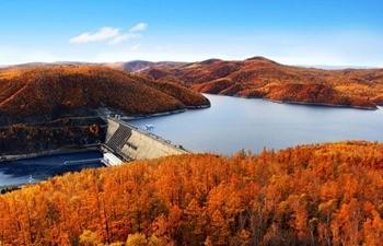 Зейское водохранилище фото