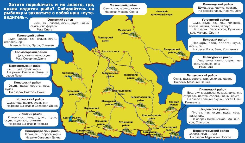 Карта. Клёвые места в Архангельской области