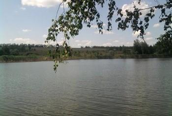 Малый пруд (село Паники) фото