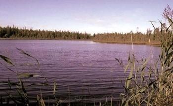 Озеро Абаткуль фото