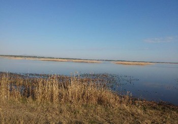 Озеро Алакуль фото