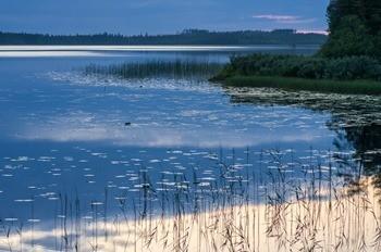 Озеро Боярское фото