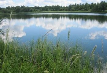 Озеро Бурцево фото
