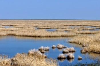 Озеро Жетыколь фото