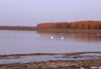 Озеро Жилое фото
