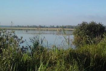 Озеро Искробольское фото