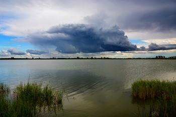 Озеро Кривское фото