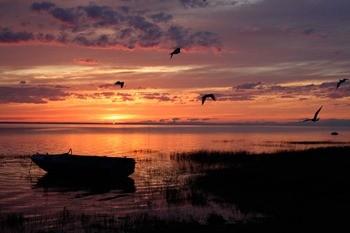 Озеро Лача фото