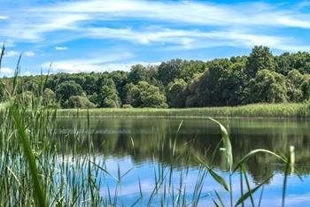 Озеро Малино фото