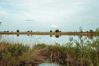 Озеро Таловатое фото