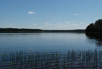 Озеро Терехово фото