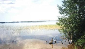 Озеро Щучье курганская область