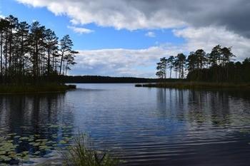 Озеро в п. Мухтолово фото