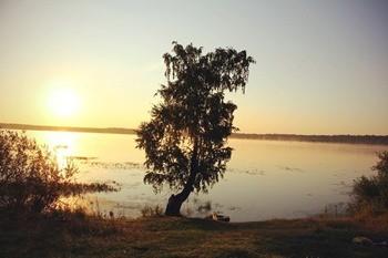 Петровское озеро фото