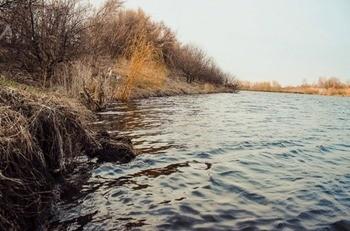 Пруд «Ольховатка» воронежская область