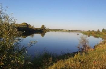 Пруд «Таловский» фото