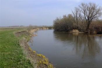 Река Бирюч фото