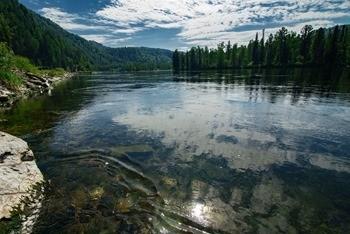 Река Бия фото