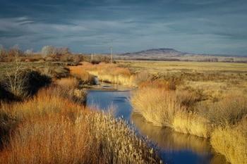 Река Буртя фото