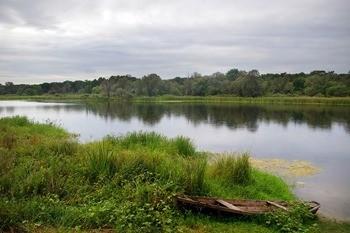 Река Воронеж фото