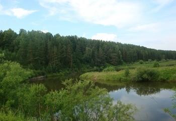Река Каменка фото