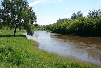 Река Крынка фото