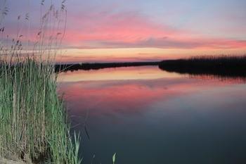 Река Маныч фото