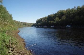 Река Межница фото