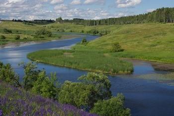 Река Осетр фото