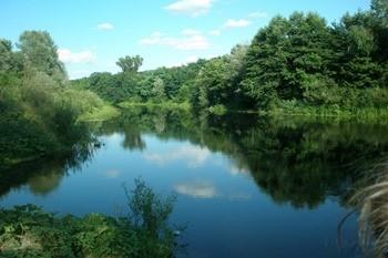 Река Псел фото