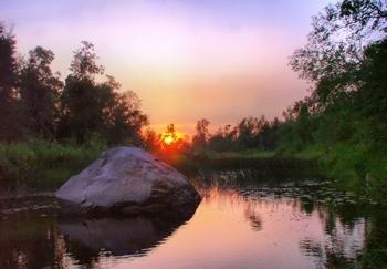 Река Соть фото