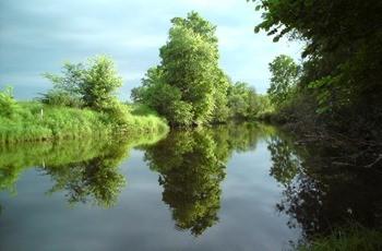 Река Сюзьва фото