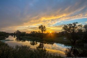 Река Тихая Сосна фото