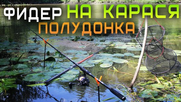 ВИДЕО: Фидер и полудонка на карася / ловля на течении с поплавком и Иваном Мазовка