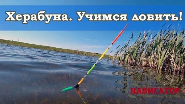 ВИДЕО: Ловля карася на херабуну. Оснастка, техника ловли, монтаж японской поплавочной удочки