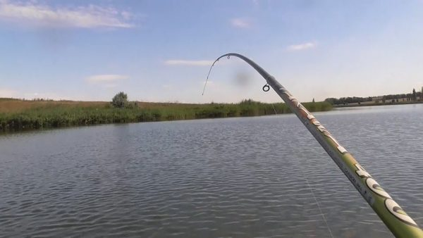 ВИДЕО: Рыбалка. КАРП на ПОПЛАВОК. Рыбалка на карпа с лодки на поплавок 2020
