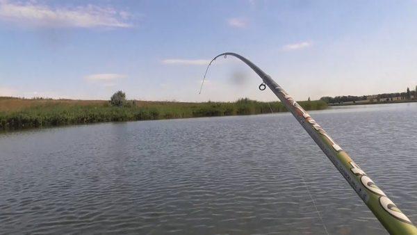 ВИДЕО: Рыбалка на карпа с лодки на поплавок 2020