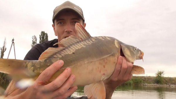 ВИДЕО: Рыбалка с ночевкой! Чайка кидается. Ловля карпа и плотвы на лодке. Удочка и поплавок