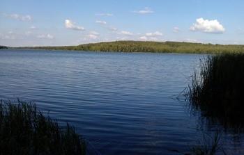 Брынский пруд фото