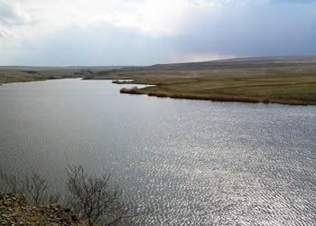 Грушевское водохранилище фото