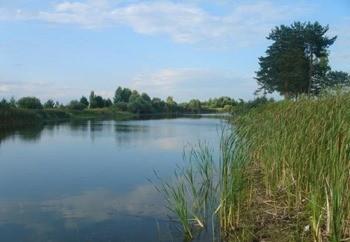 Кадышевский пруд фото