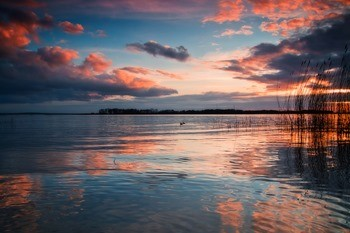 Калининградский залив фото