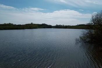 Князевский пруд фото